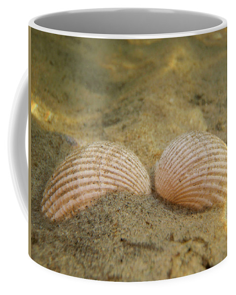 Shell Coffee Mug featuring the photograph Sleeping Mermaid by Are Lund