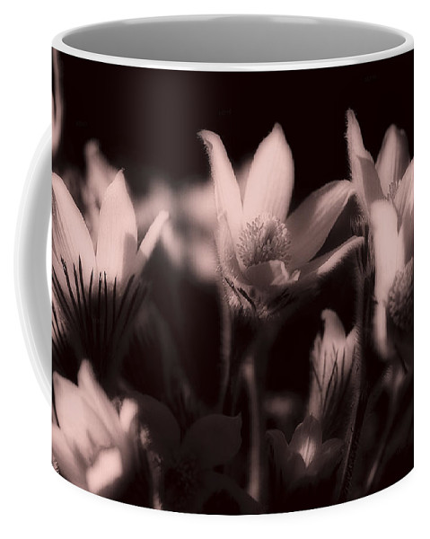 Flowers Coffee Mug featuring the photograph Sleepy Flowers 2 by Marilyn Hunt