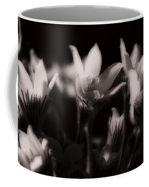 Flowers Coffee Mug featuring the photograph Sleepy Flowers by Marilyn Hunt