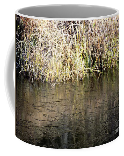 Wetlands Coffee Mug featuring the photograph Slightly Frozen by William Tasker
