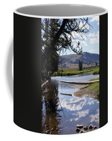 Slough Creek Coffee Mug featuring the photograph Slough Creek 1 by Marty Koch