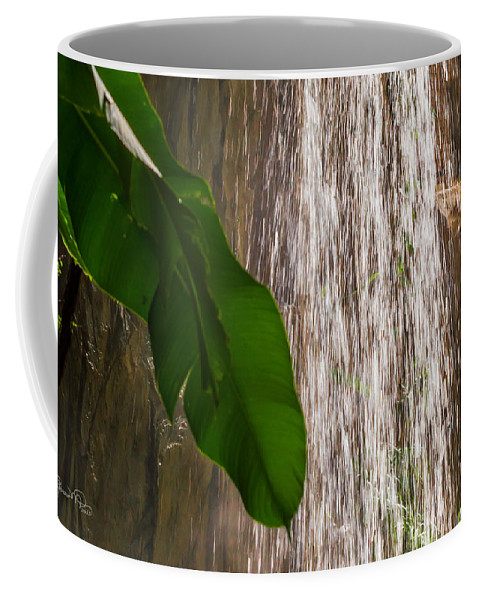 susan Molnar Coffee Mug featuring the photograph Slow Motion Tropical Waterfall by Susan Molnar