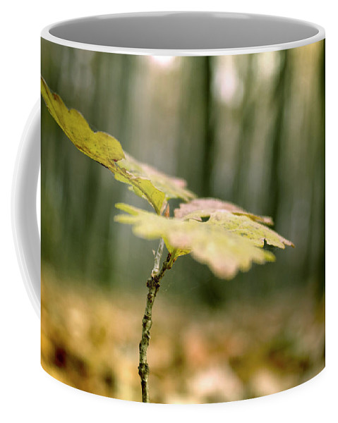Branch Coffee Mug featuring the photograph Small Branch With Yellow Leafs Close-up by Vlad Baciu