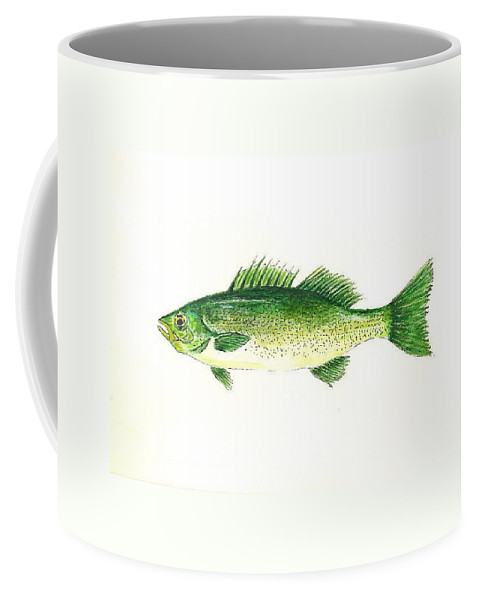 Fish Coffee Mug featuring the painting Small Mouth Bass by Michael Vigliotti