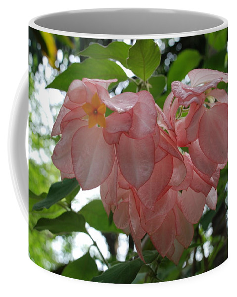 Orange Coffee Mug featuring the photograph Small Orange Flower Pink Heart Leaves by Rob Hans