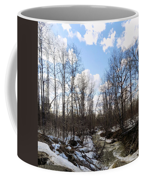 Stream Coffee Mug featuring the photograph Small Stream In Spring by William Tasker
