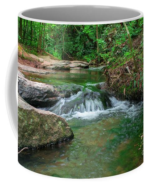 Coffee Mug featuring the photograph Small Stream by Josh-Mark Robinson