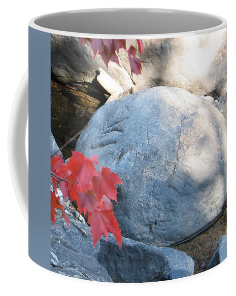 Stone Coffee Mug featuring the photograph Small Wonder by Kelly Mezzapelle