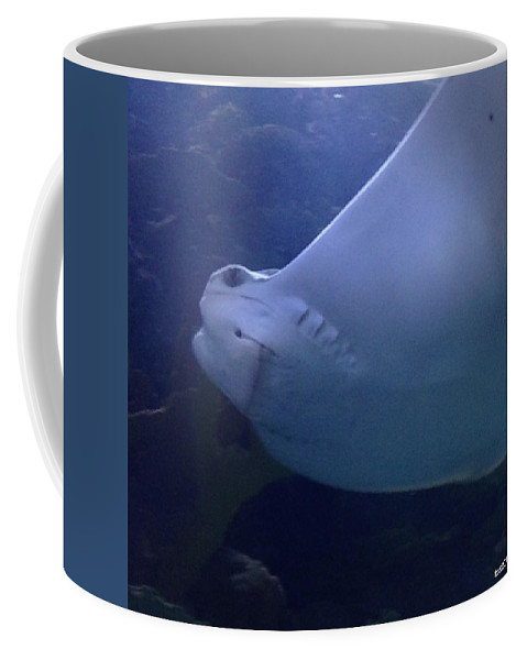 New Orleans Aquarium Coffee Mug featuring the photograph Smiley by Davis FlowerPower