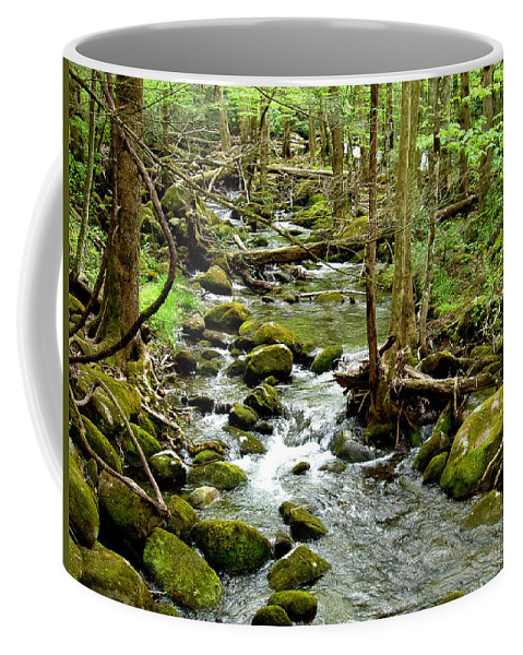 Smoky Mountains Coffee Mug featuring the photograph Smoky Mountain Stream 1 by Nancy Mueller