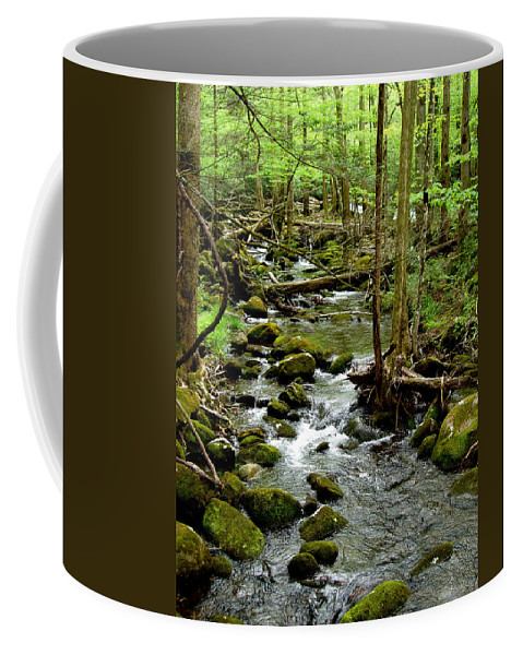 River Coffee Mug featuring the photograph Smoky Mountain Stream 2 by Nancy Mueller