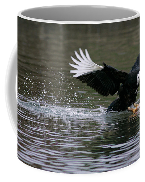 Duck Coffee Mug featuring the photograph Smooth Landing by Randall Ingalls