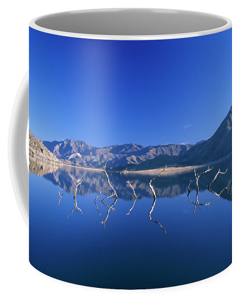 Lake Isabella Coffee Mug featuring the photograph Snags- Lake Isabella by Soli Deo Gloria Wilderness And Wildlife Photography
