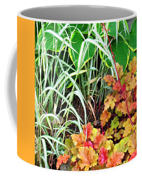 Garden Coffee Mug featuring the photograph Snail In A Rich Composition by Ian MacDonald