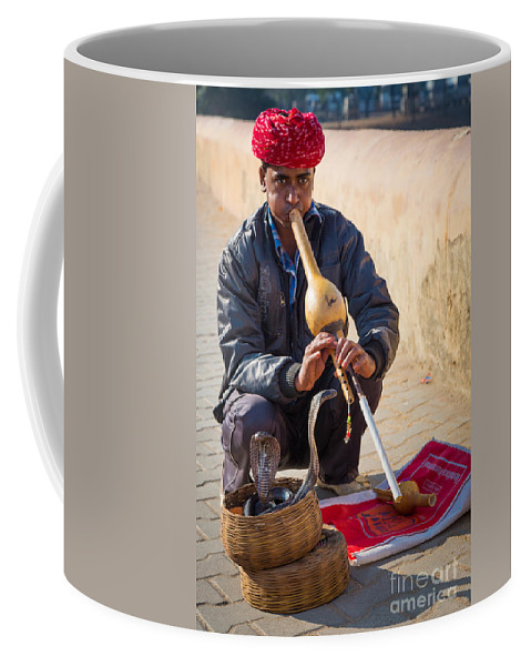 Amber Fort Coffee Mug featuring the photograph Snake Charmer by Inge Johnsson