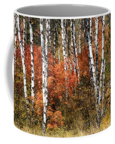 Wyoming Coffee Mug featuring the photograph Snake River Canyon by Sandra Bronstein