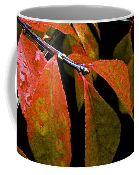 Autumn Coffee Mug featuring the digital art Snippet Of Fall by RC DeWinter
