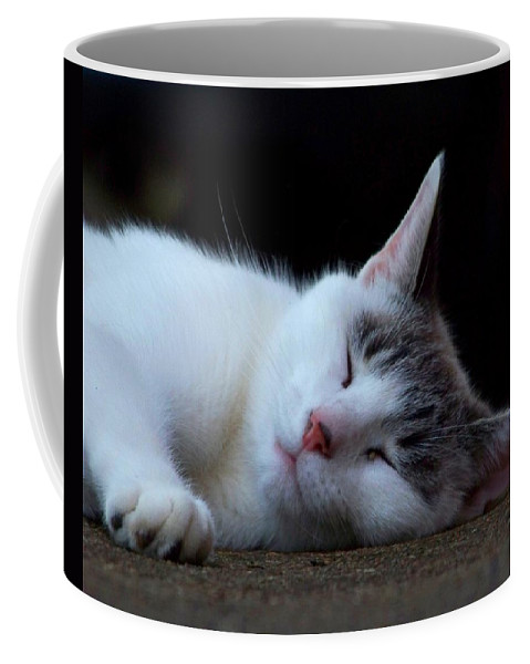 Cat Coffee Mug featuring the photograph Snooze by Jai Johnson