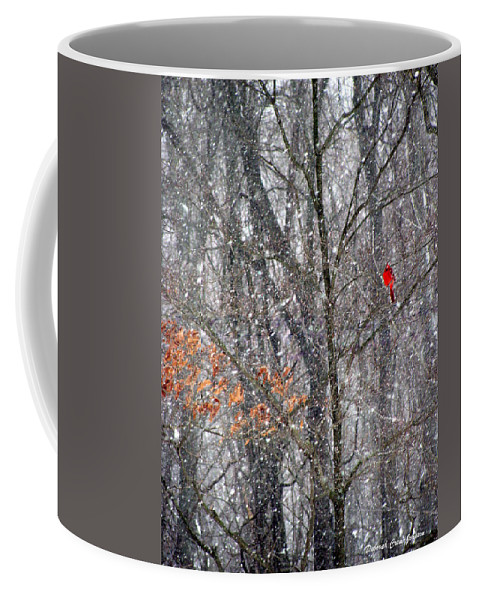 Snow Coffee Mug featuring the photograph Snow Cardinal by Deborah Crew-Johnson