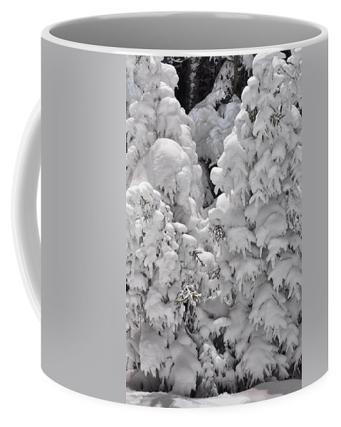 Snow Coffee Mug featuring the photograph Snow Coat by Alex Grichenko