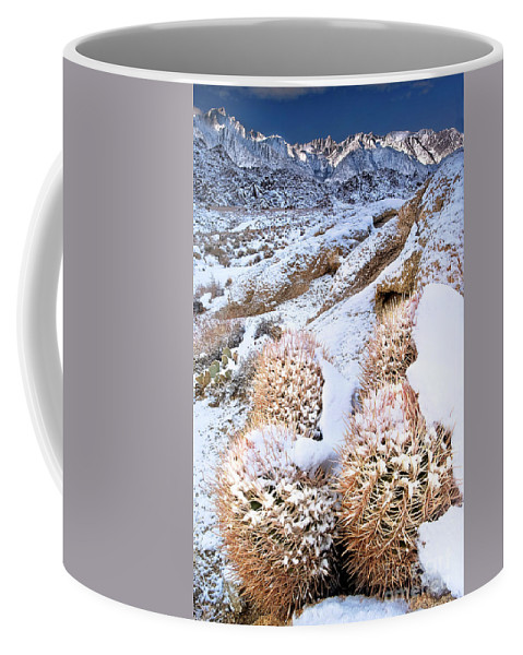 North America Coffee Mug featuring the photograph Snow Covered Cactus Below Mount Whitney Eastern Sierras by Dave Welling
