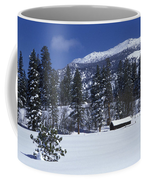 Nobody Coffee Mug featuring the photograph Snow Covered Trees And Cabin At Rock by Rich Reid