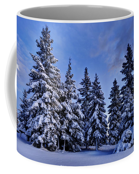 Winter Coffee Mug featuring the photograph Snow Covered Trees by Ivan Slosar