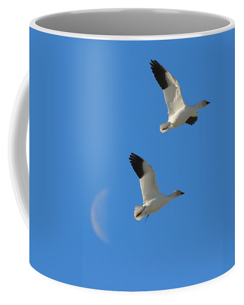 Geese Coffee Mug featuring the photograph Snow Geese Moon by Gary Beeler