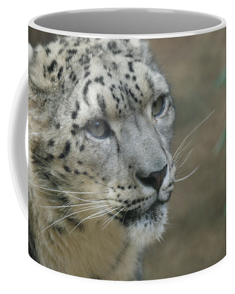 Animals Coffee Mug featuring the photograph Snow Leopard 8 by Ernie Echols