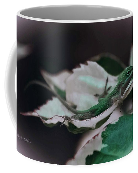 Lizard Coffee Mug featuring the photograph Snow Queen Hammock by DigiArt Diaries by Vicky B Fuller