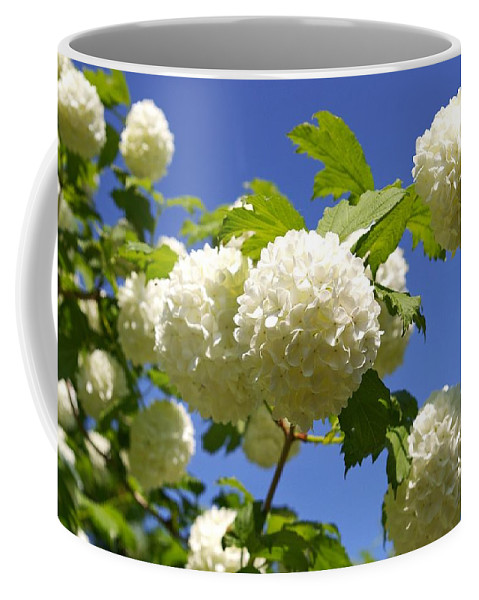 Flower Coffee Mug featuring the photograph Snowballs by FL collection