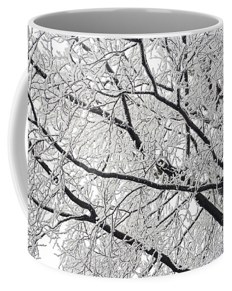Winter Coffee Mug featuring the photograph Snowy Branches by Michal Boubin
