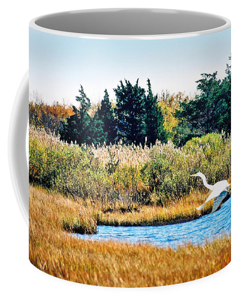 Landscape Coffee Mug featuring the photograph Snowy Egret-island Beach State Park N.j. by Steve Karol