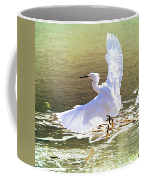 Egret Coffee Mug featuring the photograph Snowy Egret Over Golden Pond by Carol Groenen