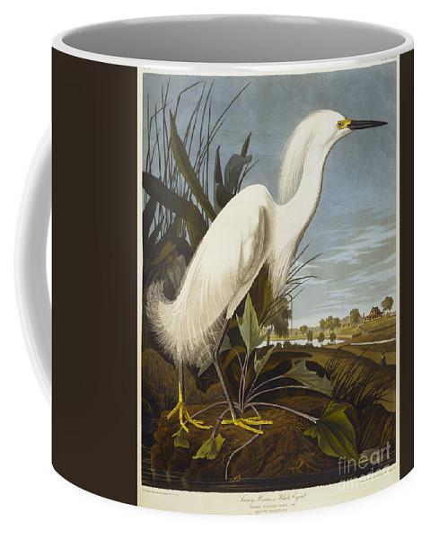 Snowy Heron Or White Egret Coffee Mug featuring the drawing Snowy Heron by John James Audubon