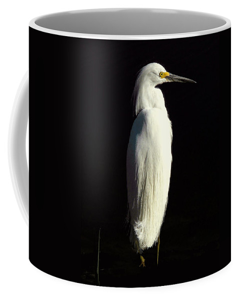 Nature Coffee Mug featuring the photograph Snowy by Peg Urban