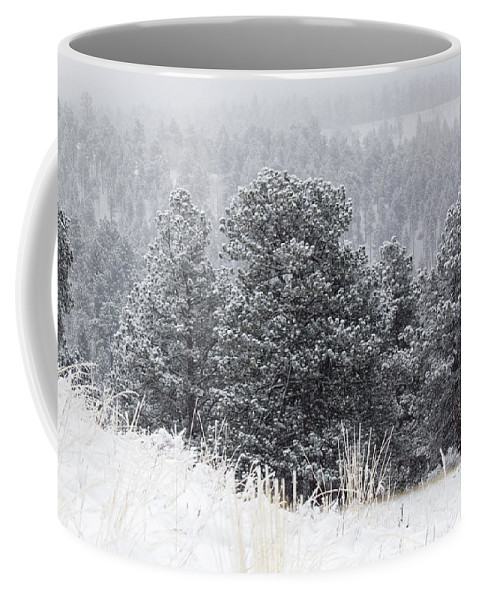Blizzard Coffee Mug featuring the photograph Snowy Pines In The Pike National Forest by Steve Krull