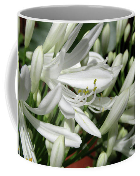Agapanthus Coffee Mug featuring the photograph Snowy White Beauty. 7 by Kim Tran