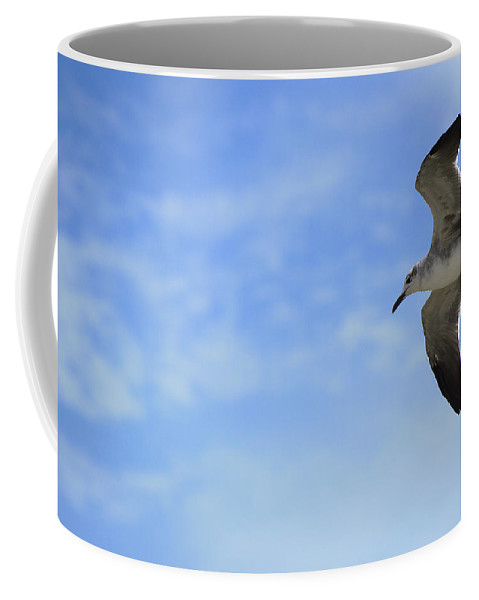Flight Coffee Mug featuring the photograph Soaring by Kenneth Albin