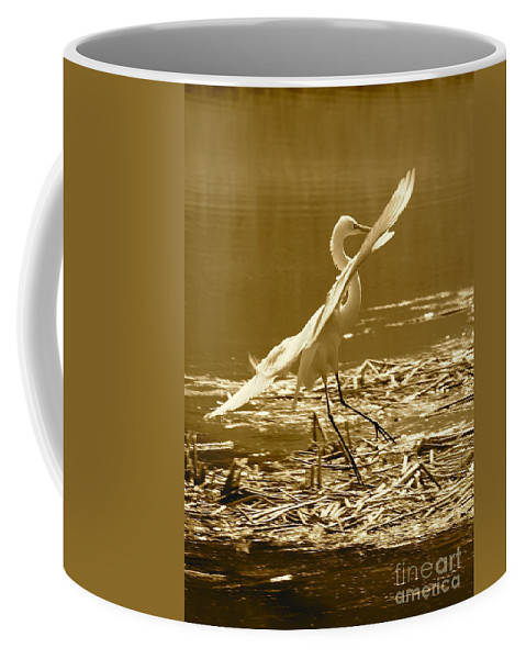 Bird Coffee Mug featuring the photograph Soft Landing by Carol Groenen