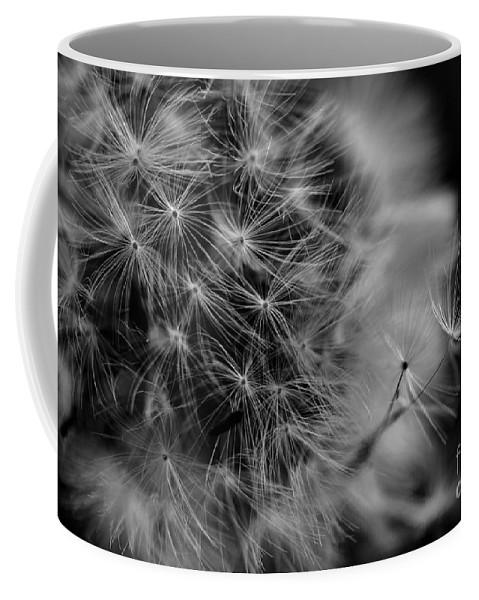 Soft Whisper Coffee Mug featuring the photograph Soft Whisper 4 by Lisa Renee Ludlum