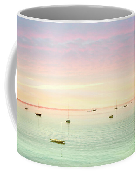 Kremsdorf Coffee Mug featuring the photograph Softness And Light by Evelina Kremsdorf