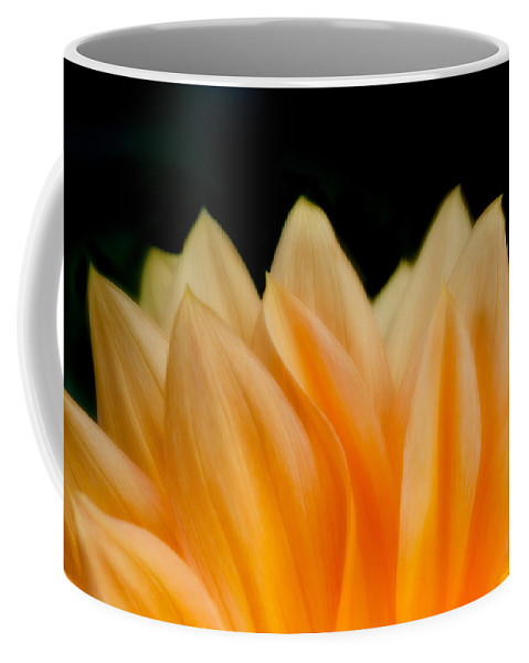 Flower Coffee Mug featuring the photograph Softness Of The Petals by Greg Nyquist