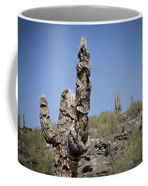Saguaro Coffee Mug featuring the photograph Soldier of Misfortune by Kelley King