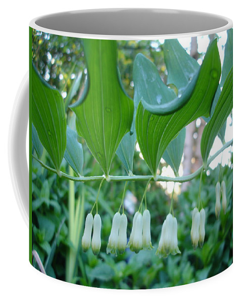 Flora Coffee Mug featuring the photograph Solomans Seal In Spring by Susan Baker