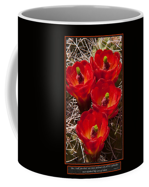 Flowers Coffee Mug featuring the photograph Solomon's Dress by Ward Thurman