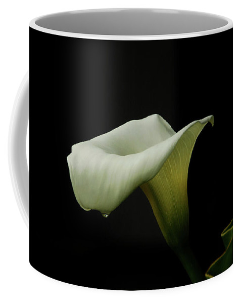 Calla Lily Coffee Mug featuring the photograph Something About Lily by Donna Blackhall