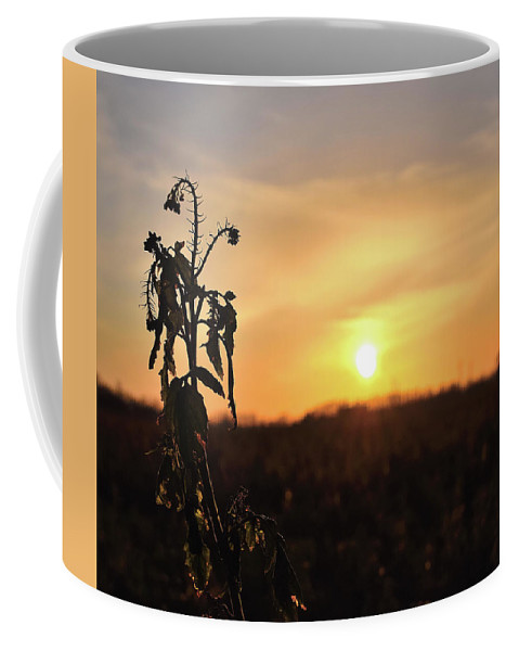 Sonnenuntergang Blume Flowwer Sky Himmel Coffee Mug featuring the photograph Sonnenuntergang by Scimitarable