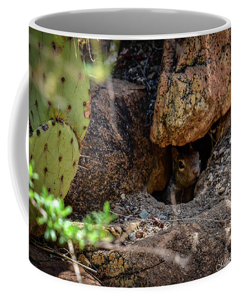 Beauty In Nature Coffee Mug featuring the photograph Sonoran Prairie Dog by Eric M Bass