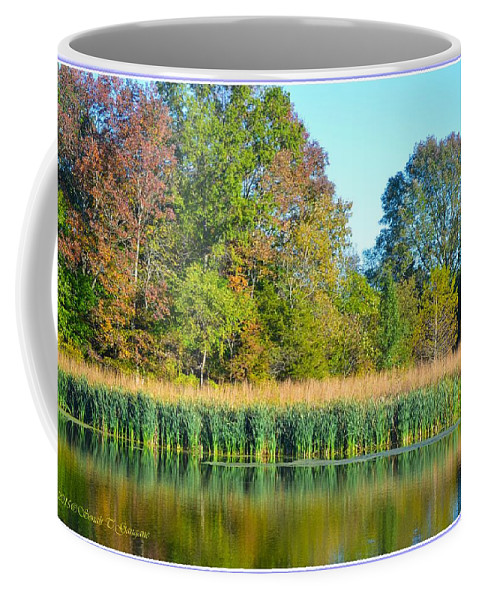 Reflections Coffee Mug featuring the photograph Soothing Reflections by Sonali Gangane